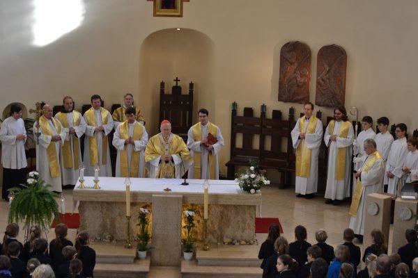 Erdő Péter bíboros a Szent András iskola jubileumán